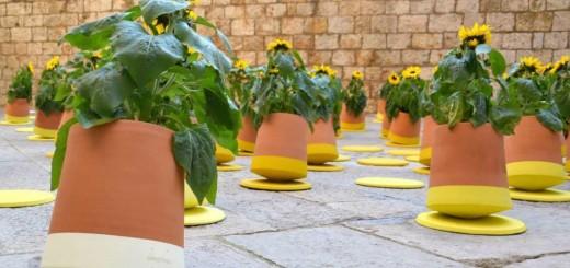ぐるぐる踊って日光を吸収!スペインで生まれた回転式プランター「Voltasol」